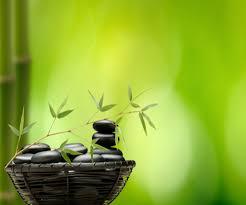 Fond zen